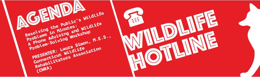 Wildlife Hotline Workshop Header