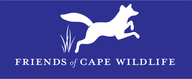 Contacts for Wildlife Rehab Centers : Cape Cod Organizations