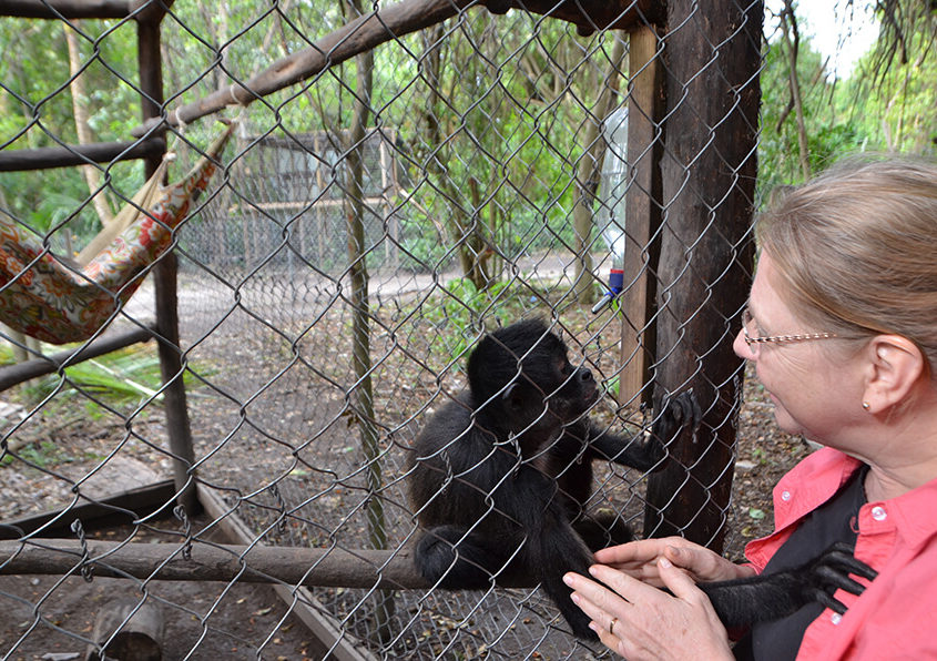 Caryn Ritchie with howler monkey