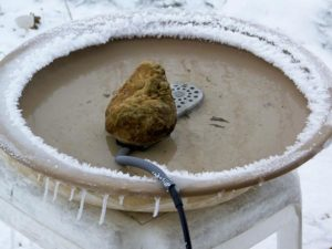 Heated birdbath in winter snow.